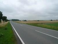 Straße nach Ditfurt